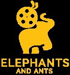 Video Production Milton Keynes | www.elephantsandants.co.uk